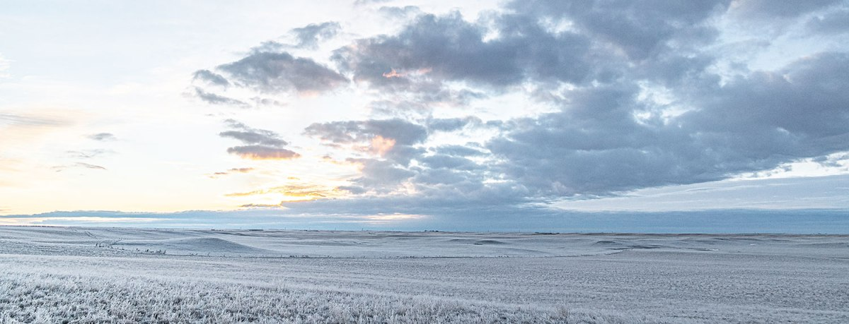 Hoarfrost on flat landscape, with sunrise. Photo by W. Scott Olsen.