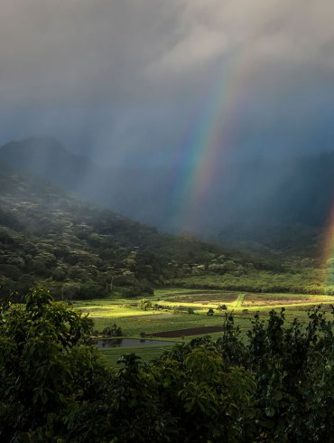 Rainbow in green valley