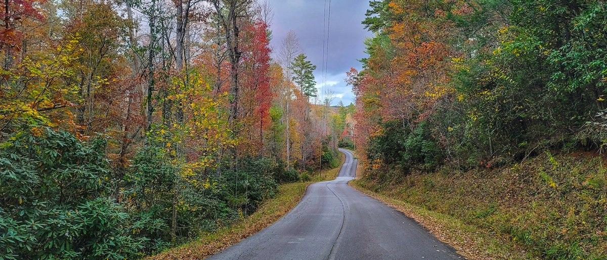 Wet road in autumn