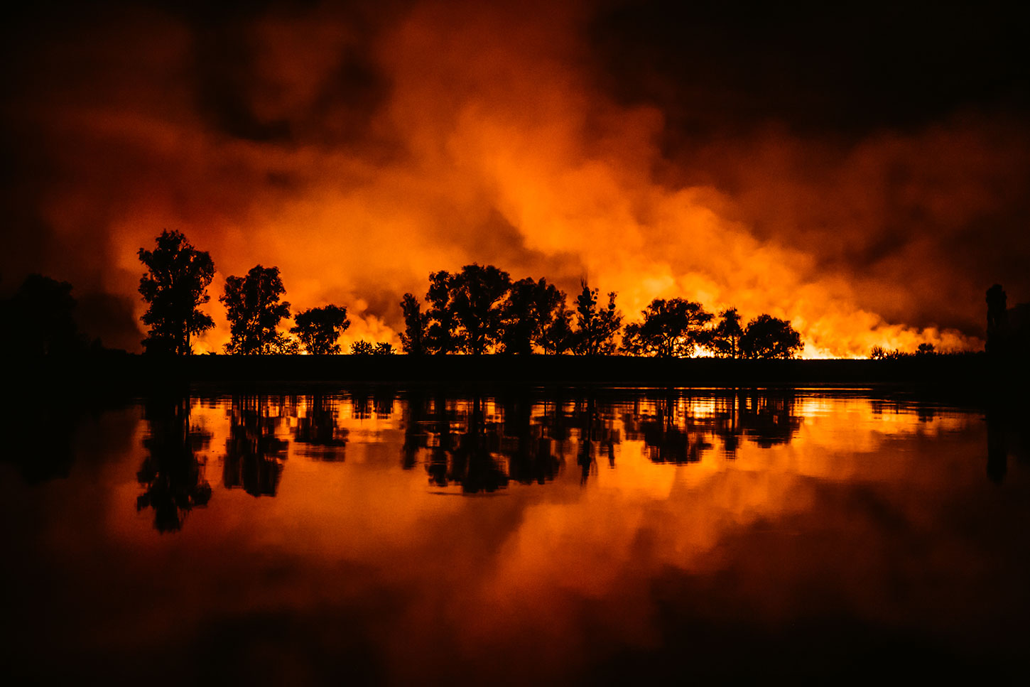 Wildfire reflected on water with silhouetted trees