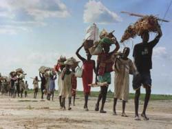 profughi ambientali convenzione ginevra