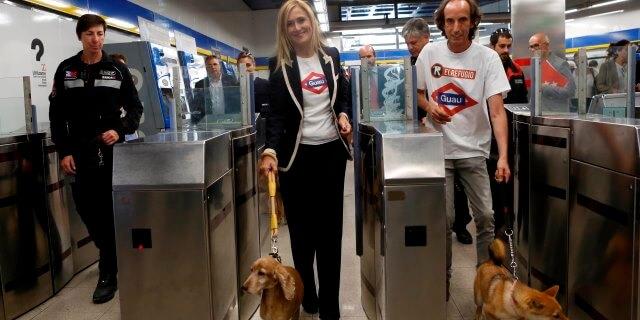 Se calcula que unos 370 canes viajan diariamente en el metro de Madrid.