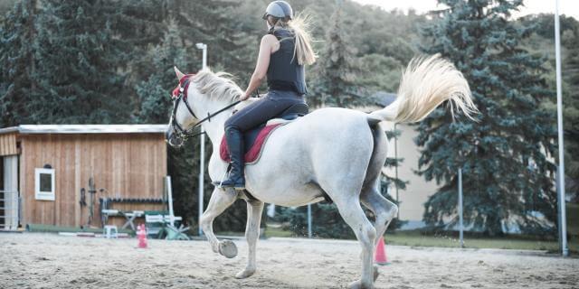 La equinoterapia, una técnica con caballos.