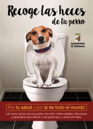 """Cartel de la Campaña """"Por tu salud y por la de todo el mundo"""""""
