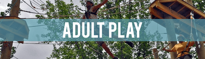 A man dives for a rope on the challenge course. The words Adult Play are written over the image.