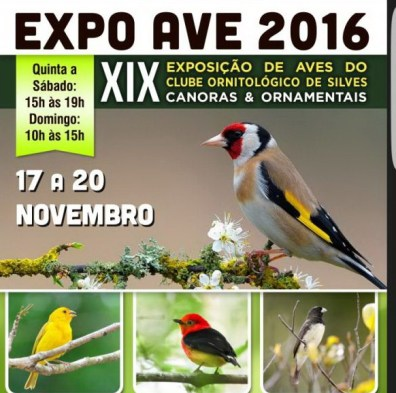 expoave-silves-site