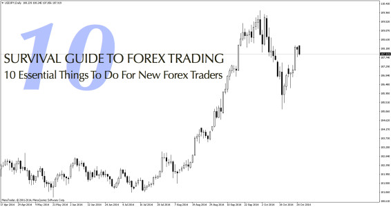 Survival guide to currency trading