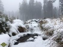Overland-Travel-Ardennes-Belgium-Snow