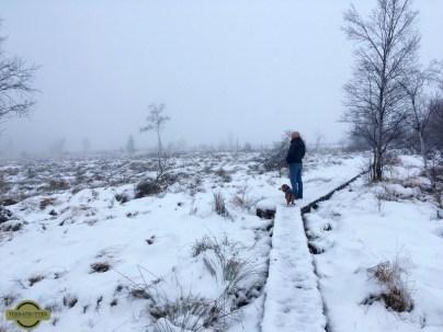 Overland-Travel-Belgian-Ardennes-Winter