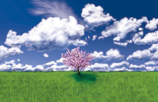 Apple Tree (c)2001, Digital Art