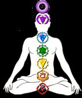 La méditation et les chakras