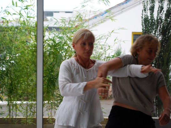 Application martiale du Taiji Quan à Terre d'Asie avec Catherine Bousquet