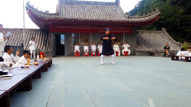Démonstrations d'arts martiaux et de Qi Gong par Maître Chen Li Sheng et ses étudiants