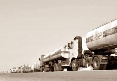 Il tour dei bisonti del petrolio