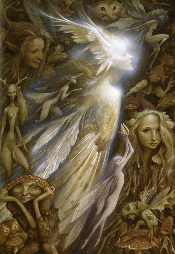 The Faerie Realm Brian  Wendy Froud  Essays on Mythic Fiction  Art