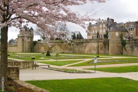 Rempart Vannes & Château de l'Hermine+jardin