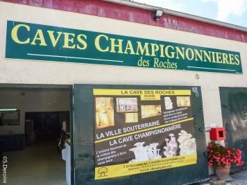 Caves des Roches@SDeroire - Terroir Evasion