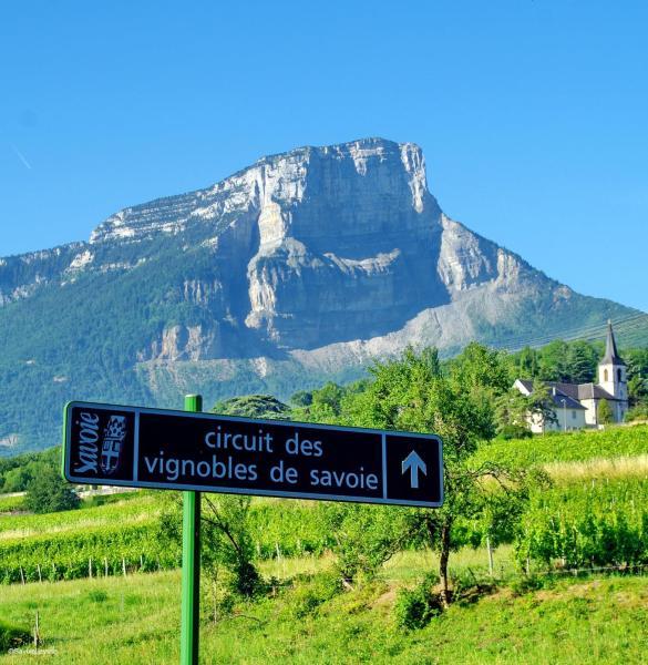 Vins de Savoie chambéry alpes oenotourisme