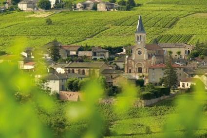Village Julienas Beaujolais