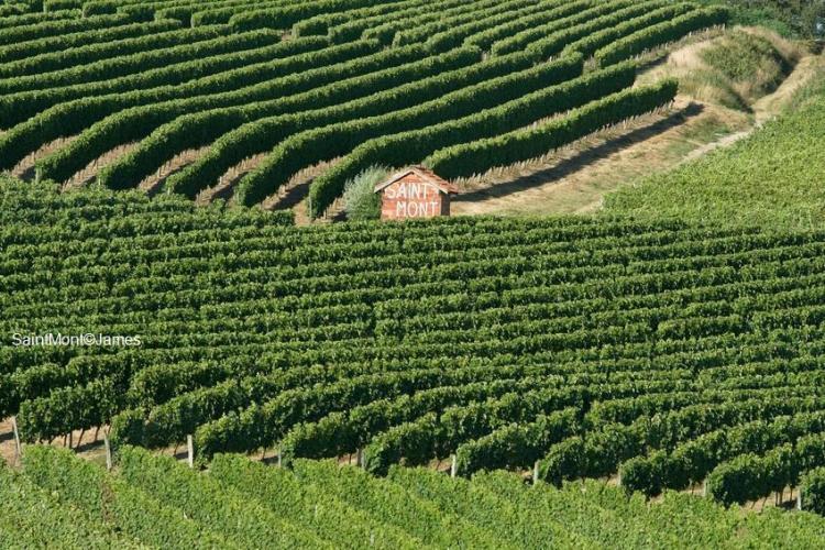 Plaimont producteurs Saint Mont Gascogne
