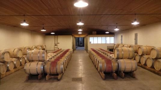 Vinsliquoreux de Bordeaux - Château de Birot - Cadillac - Chai