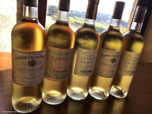 Vinsliquoreux de Bordeaux - Château Lagarde Tinon Sainte Croix du Mont