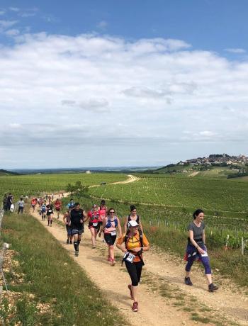 Trail de Sancerre Trail coureurs