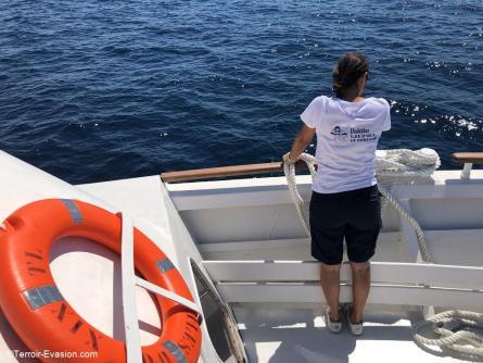 Le Lavandou - Bateau pour les iles d'Or