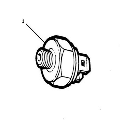 Speed Control Switch, 3.6 Litre: Terrys Jaguar Parts