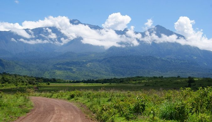 Weg in Arusha National Park