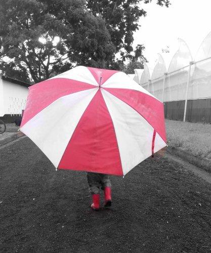 Julian onder de paraplu in de regen