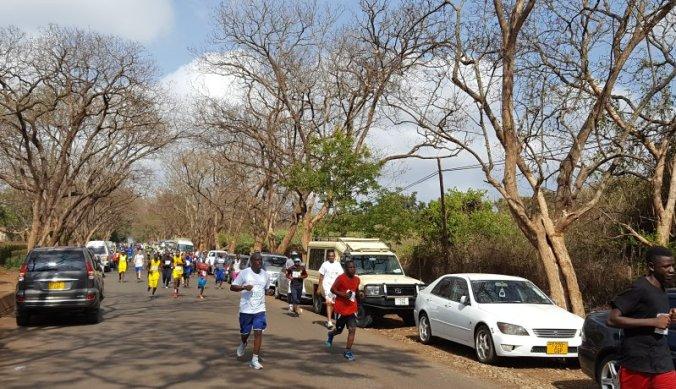 Kilimanjaro halve marathon in Moshi