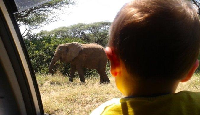 Voor het eerst op safari in Tanzania