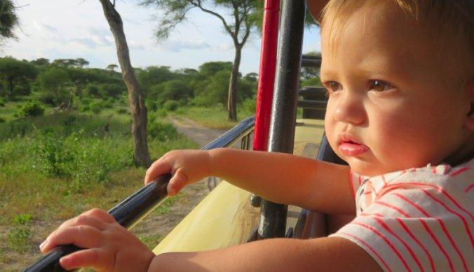 Op safari gaan is altijd weer spannend