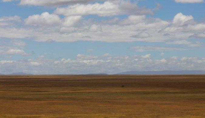 Eindeloze vlaktes van de Serengeti