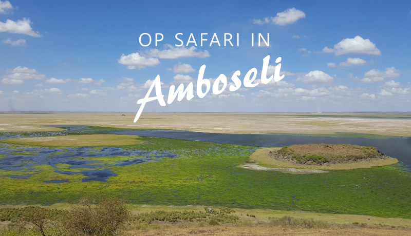 Op safari in Amboseli National Park
