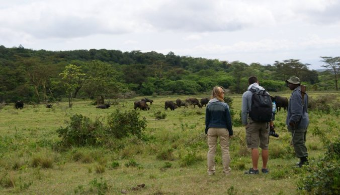 Walking safari in Arusha National Park