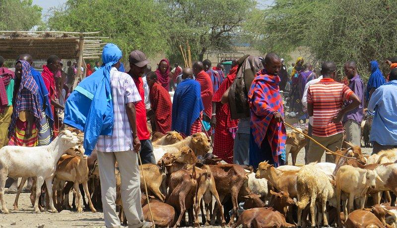 7x Waar je maar niet aan kunt wennen in Tanzania