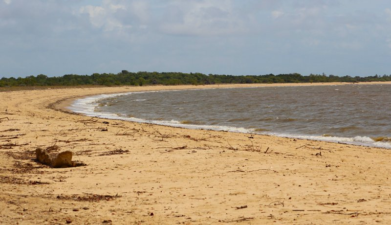 Van bush tot beach in Saadani National Park