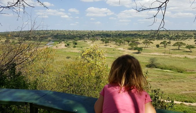 Uitzicht over Tarangire rivier
