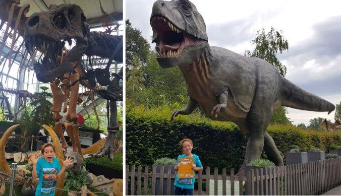 Dino's zoeken in het dinomuseum