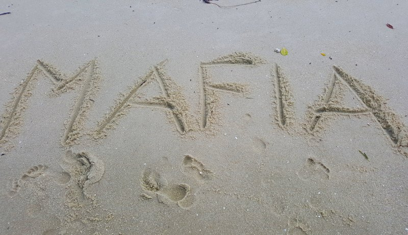 De walvishaaien van Mafia Island