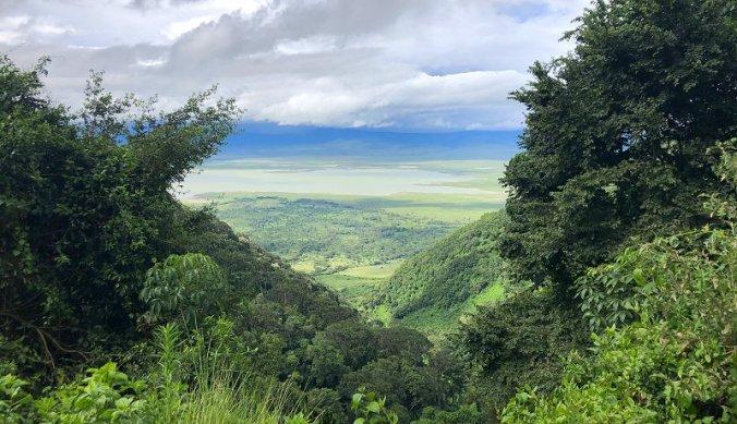 Verlaten, diepgroene Ngorongoro Krater met pasen