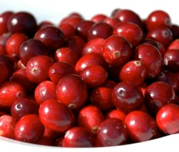 manfaat cranberries