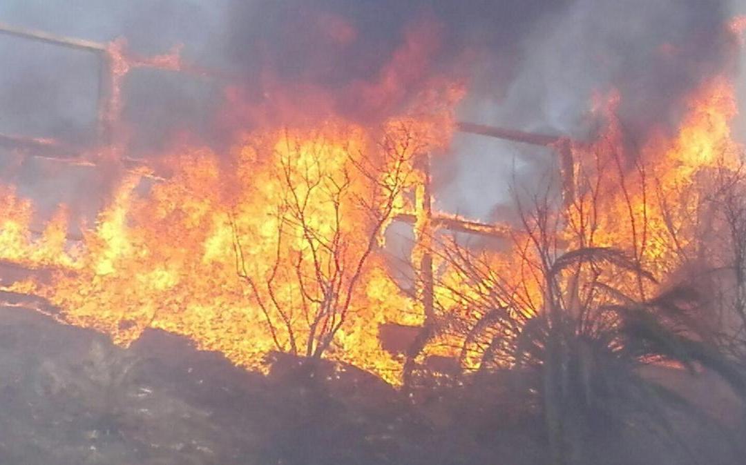 Ladispoli, da 1.000 a 10.000 euro di multa per chi appicca incendi