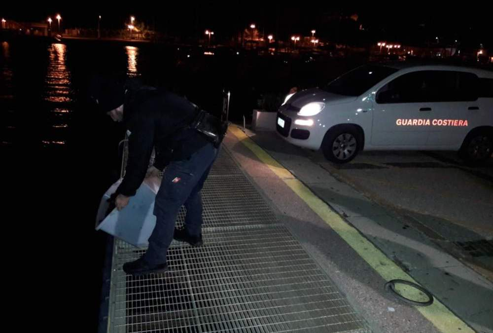 Ricci nascosti sequestrati dalla Guardia Costiera a Santa Marinella: multa da 5mila euro