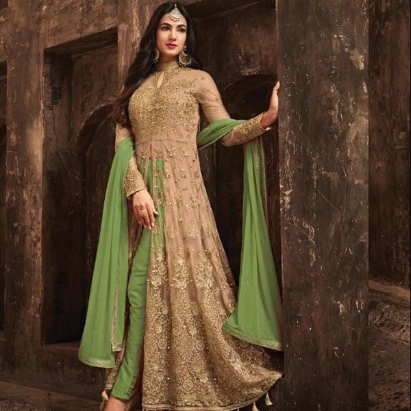 pakistan hint stili elbise