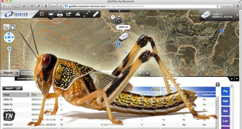 Eritrea Harnessing Power of Modern Technology to Detect and Control Desert Locust