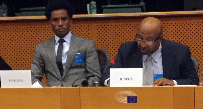 Ethiopian Opposition Briefs Members of EU Parliament
