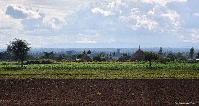 Ethiopia land grab on Sudanese territory